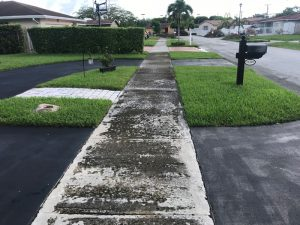 Dirty walkway before our service